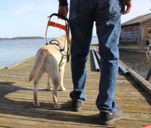 Gående människa med ledarhund på brygga