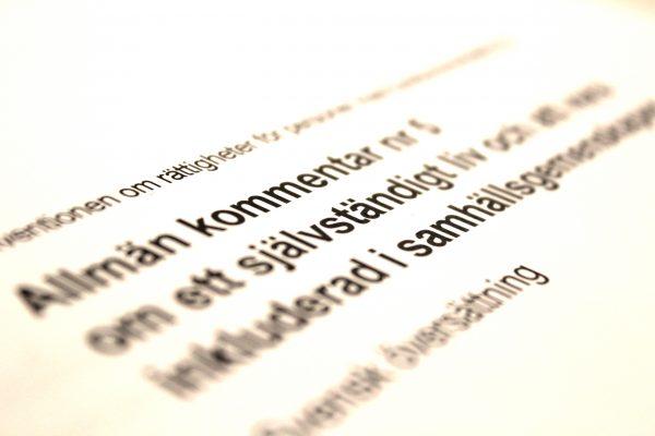 Allmänna kommentaren till Artikel 19 översatt till svenska