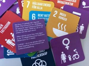 Olika kort ur kortleken med ikoner på artiklar i funktionsrättskonventionen och mål i Agenda 2030.
